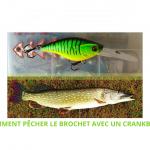 Comment pêcher le brochet avec des crankbaits : Guide 2020 débutant