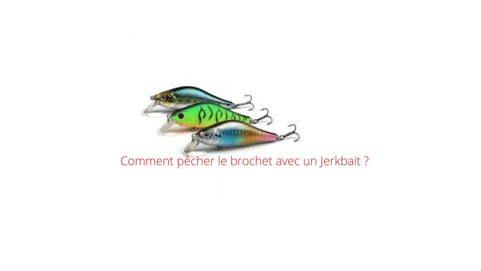 pêcher le brochet avec un Jerkbait
