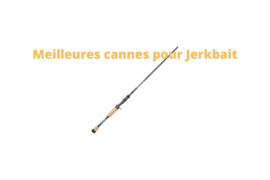 meilleures cannes à pêche à Jerkbait en 2020