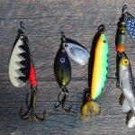 Top 10 meilleurs hameçons de Pêche pour attraper des gros poissons