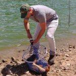 Quel est le meilleur moment pour pêcher la carpe ? Guide pour les 4 Saisons