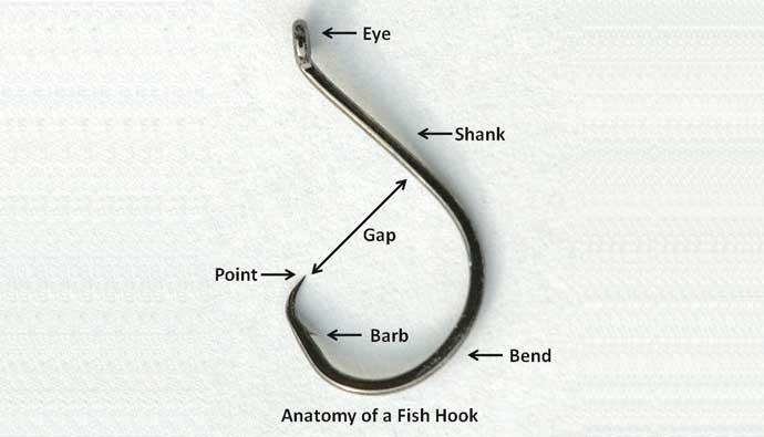 Anatomie de hameçon aliexpress