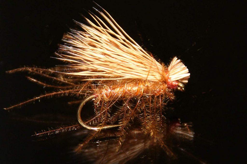 meilleurs mouches de pêche : mouche sèche